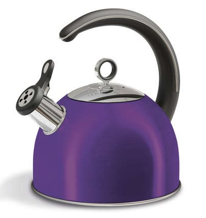 MORPHY RICHARDS Accents Plum Stove Kettle 2.5L 46503
